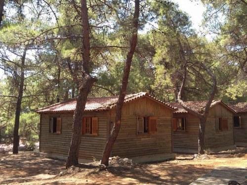 Πηγή φώτο: Kounoupi.gr